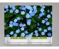 Estor enrollable FOTOGRAFIA flores azules