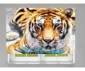 Estor enrollable FOTOGRAFIA tigre