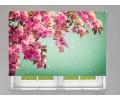 Estor enrollable FOTOGRAFIA primavera rosa