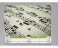 Estor enrollable FOTOGRAFIA notas musicales